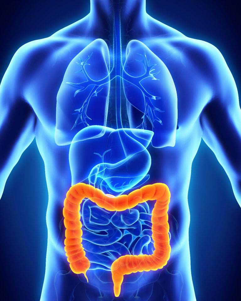 The Importance Of Colon Screening In Atlanta Ga Gi Specialists Of